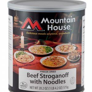 Beef Stroganoff 1_500x750