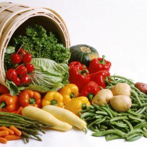 Gardening, Food and Livestock